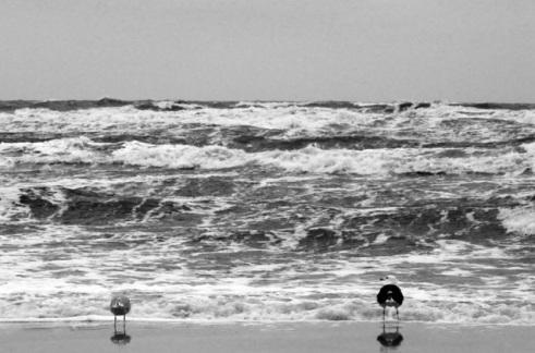 In der ersten Reihe - Foto © claudia pautz 2011