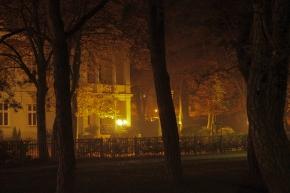 Herbstliche Pracht © claudia pautz