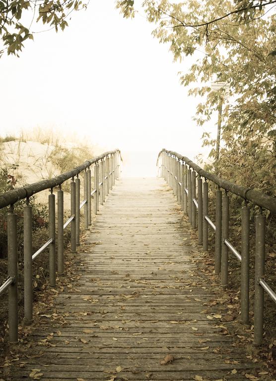 Das ist der Weg ©Claudia Pautz 2013